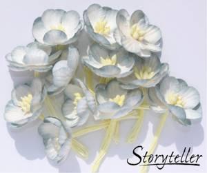 Bilde av Storyteller - Cherryblossom - Blå kant - 3313