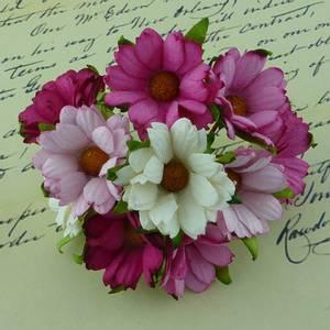 Bilde av Flowers - Chrysanthemums - SAA-267 - Mixed Pink / White - 50stk