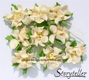 Bilde av Storyteller - Gardenia små - Krem - 3436