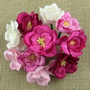 Bilde av Flowers - Magnolias - SAA-421 - Mixed Pink - 50stk